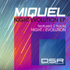 Night Evolution EP - Dirty Stuff Records